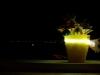 Lo Scatol8 illumina la veduta sul golfo